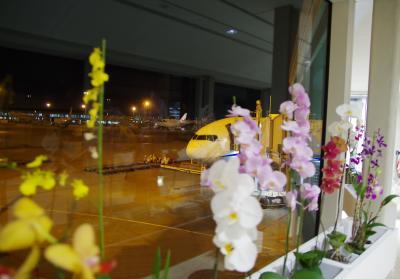 2019年7月 夏の沖縄へ(1日目・2日目-1)~一路・那覇へ