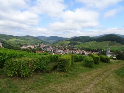 フランス アルザス、ブルゴーニュ地方ワインツアーとパリ (2)アルザスワイン街道ツアーとリクヴィル