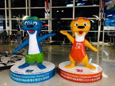 20回目の韓国は光州で2019水泳世界選手権観戦!~(1)深夜「務安国際空港」に到着!