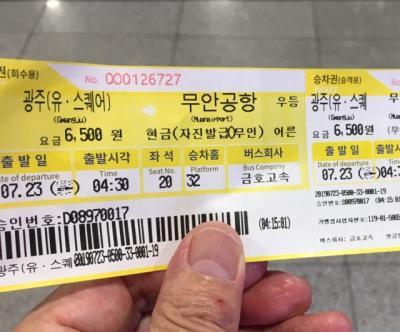 20回目の韓国は光州で2019水泳世界選手権観戦!~(7)3泊の弾丸旅行は早朝の帰国です!