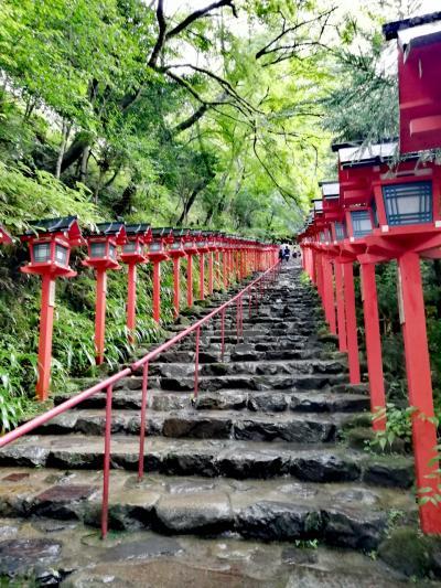 ハイキングデビューにおすすめ!【京都】鞍馬寺→貴船神社コース