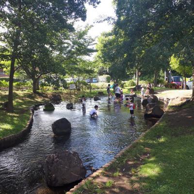 2019/7 千葉県 流山 野々下水辺公園 じゃぶじゃぶ池