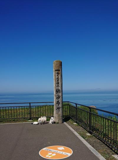楽しんだぜ!! 2019  北海道  6日目 『厚岸のカキ☆納沙布岬☆浜中町でルパン☆霧多布岬・アゼチの岬☆コンキリエでBBQ』の旅