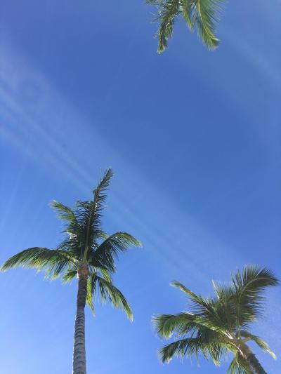 小3と2歳児連れてのハワイ島旅行 前半編