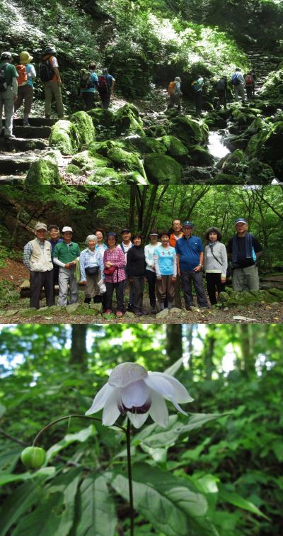 ハイキング倶楽部第56回 御岳ロックガーデン Hiking to Mt.Mitake rock garden