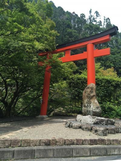 夏の京都、神社巡り 地獄のサイクリング