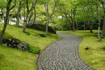 梅雨旅・箱根~苔の庭園と強羅の濁り湯~