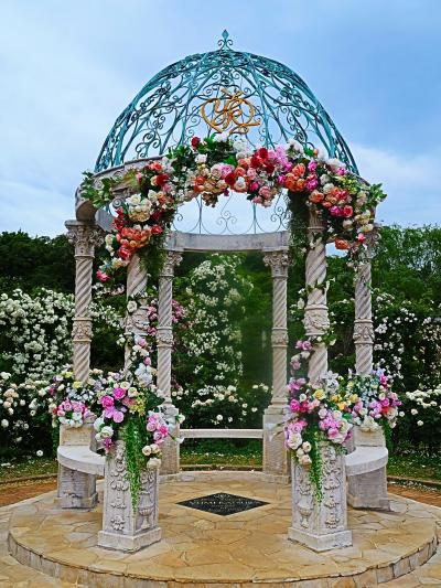 京成バラ園-2 由美のガゼボ フランス庭園の中心に ☆オールドローズの系譜もたどり
