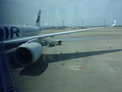 エアバスA350-900に乗りました。2回目です。NGO-HEL AY-080 便です。