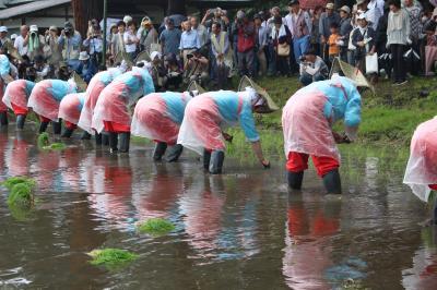 伝統行事・近津神社の中田植を見に行く
