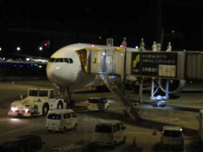 [2019SFC修行その6]世界最長路線で行くシンガポール&ニューヨーク旅行2 チャンギ空港を満喫