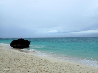 家族で与論島旅行〈3〉雨の日観光