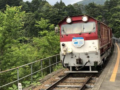 2019年 鉄オタじゃないけど大井川鉄道に乗るだけの旅