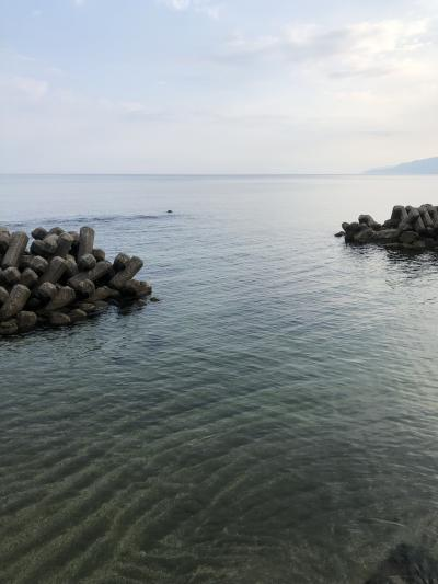 今年初海①
