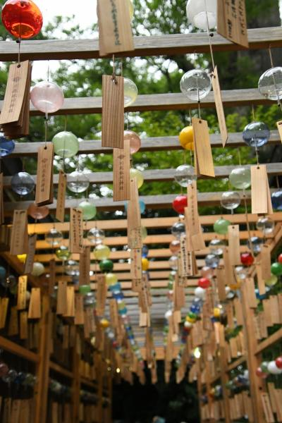「川越氷川神社」夏恒例の風鈴祭りを見に行き、「夏越の大祓」茅の輪くぐりに参列できました
