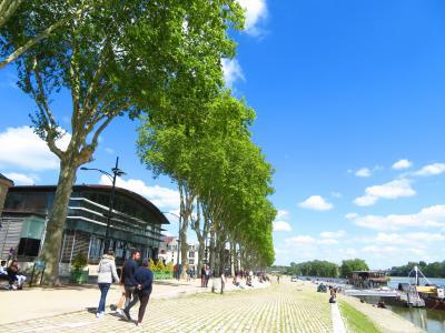 ロアール川沿いの遊歩道は京都三条から四条の鴨川の河川敷みたいだった♪2019年5月フランス ロワール地域他8泊10日(個人旅行)123
