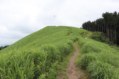 2019.7.7 雨が降らなかったので近場で登山~岩湧山~