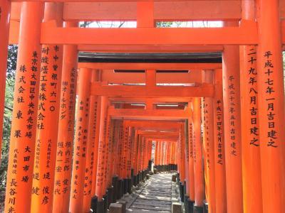 京都 フラフラ とりあえず稲荷神社