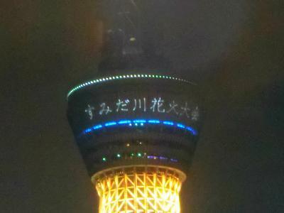 2019年 7月 東京都 隅田川花火大会
