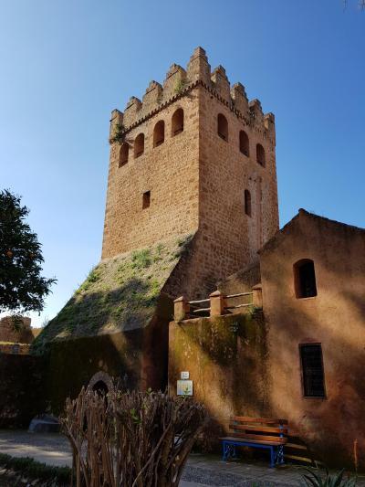 初モロッコ!スペインのタリファからシャウエンの青い村とフェズへ(4)シャウエンからフェズへ
