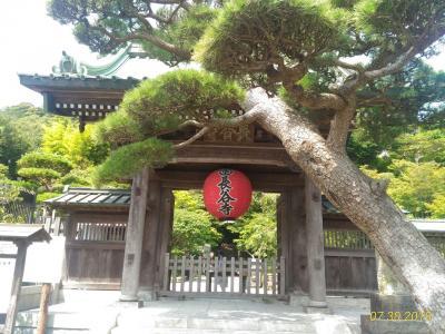 夏の鎌倉散策(長谷・鎌倉大仏)