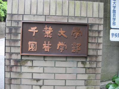 学食訪問ー202 千葉大学・松戸キャンパス