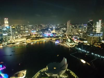 2019シンガポール女子旅⑤フォトジェニックOPツアー終わった後、夜はマリーナベイサンズへ