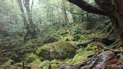 GW屋久島+南九州旅行4