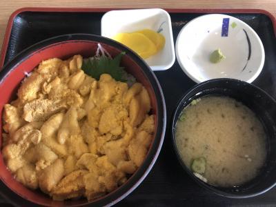 夏休み!北海道でウニを食べるぞ!!