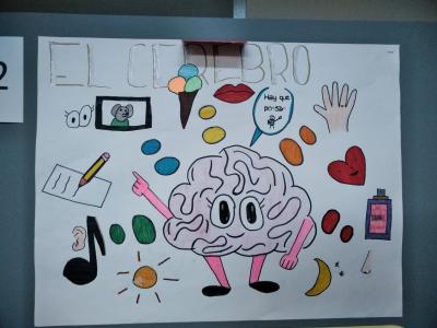 スペインの子供たちが描いた脳の絵画展