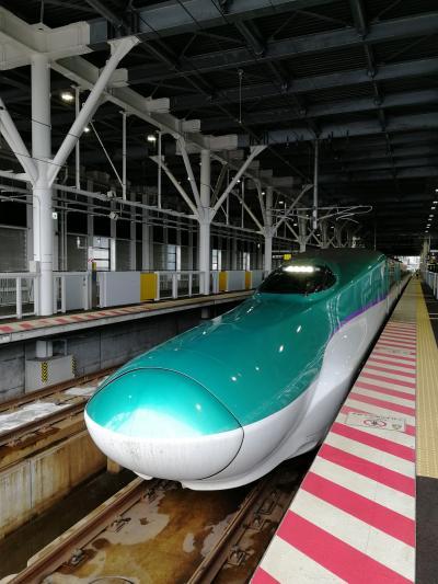 北海道新幹線に乗って宮城1