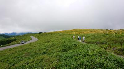 1泊2日 長野 (3-3) 夏の諏訪観光 ビーナスラインと霧ヶ峰高原