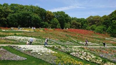 ガーデンネックレス横浜 2019
