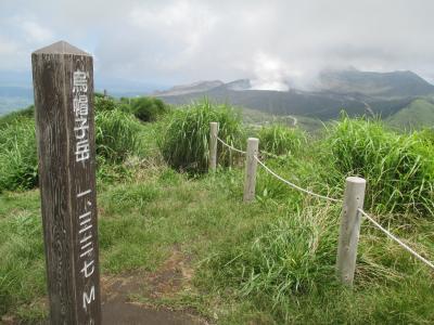 緑がまぶしい阿蘇・草千里