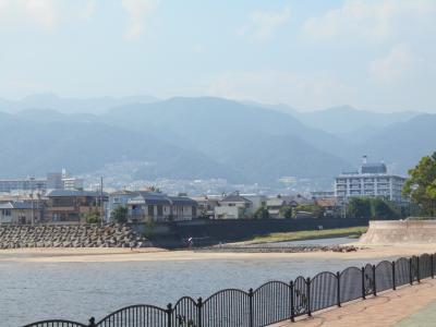 夏だ!!! 芦屋川河口付近を散策したよ。