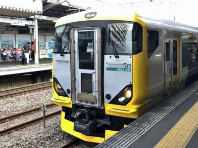2019年8月地下に潜る東京鉄道旅行3(ホリデー快速鎌倉号ほか)