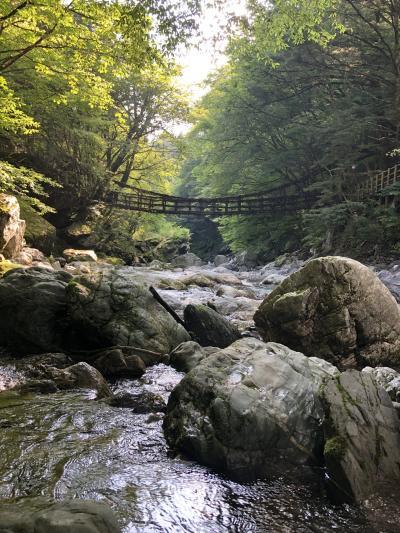 三嶺登山、案山子の村、名頃から、奥祖谷かずら橋、いやしの温泉郷