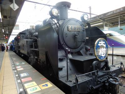 栃木鉄道旅【日帰り⑤】
