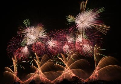 長岡まつり大花火大会: 長岡花火をバスツアーで観覧し、写真も撮影