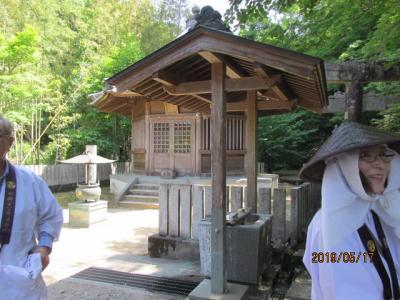 四国霊場・徳島編(37)第十一番藤井寺に参拝。