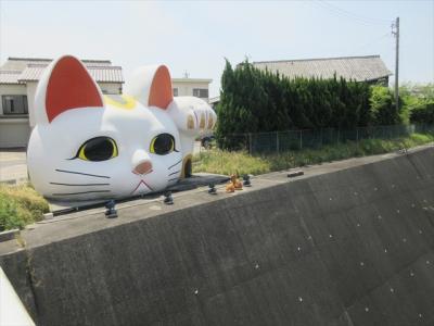 猫探し【愛知(とこにゃん・Tokonyan)編】