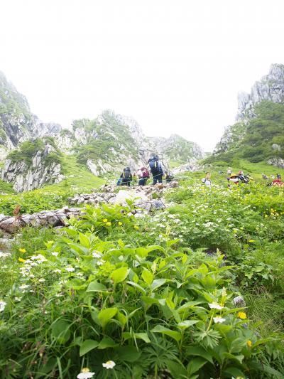 百名山第七段 木曽駒ヶ岳へ  2  天空へ向かう花の道