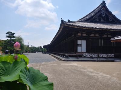 夏の3ババ。そうだ!京都いこっ!《その1》