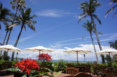 沖縄の休日は青い海と、さーふーふー