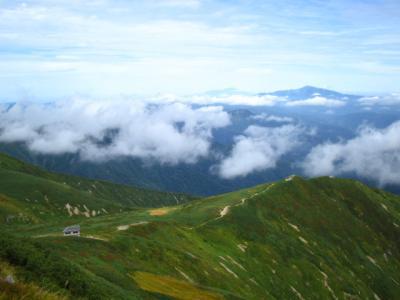 朝日連峰最高峰 大朝日岳 ヒメサユリをはじめ花々の季節