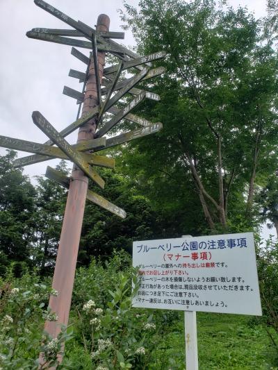 群馬ドライブ(2-2)宝川温泉~道の駅 川場田園プラザ~こんにゃくパークの巻