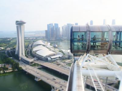 2019シンガポール初上陸④