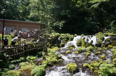 19'8月夏。羊蹄山を臨む夏のニセコと京極子連れ旅行記♪マイナスイオン溢れる「ふきだし公園」とうどんが美味しい「野々傘」へ☆