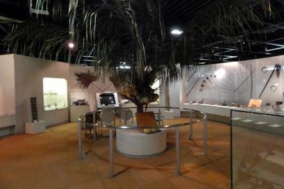 夏の紀伊半島3泊 やしの実博物館その2