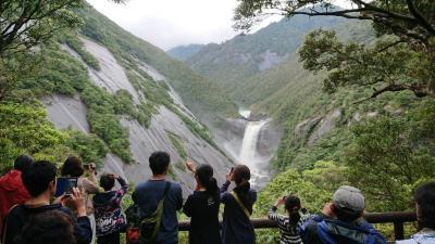 GW屋久島+南九州旅行5